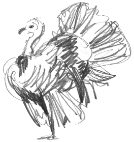 turkey illustration - side profile