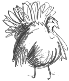 turkey pencil illustration