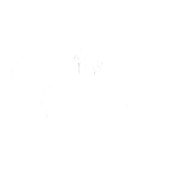 turkey illustration white - facing